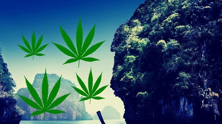 Cannabis Clinic in Thailand