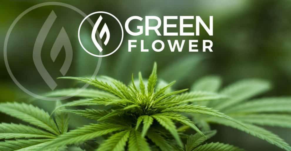 Green Flower Media Introduces CBD Certificate Program