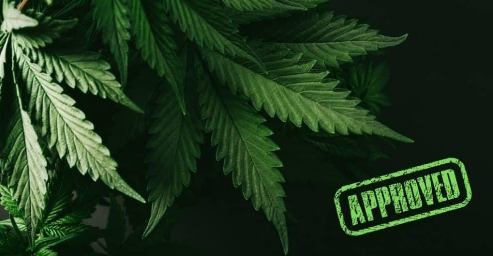 Marijuana Decriminalization Bill