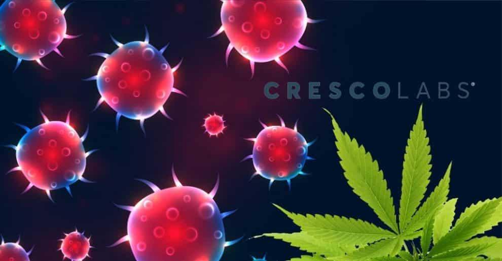 Cresco Labs responce over COVID-19