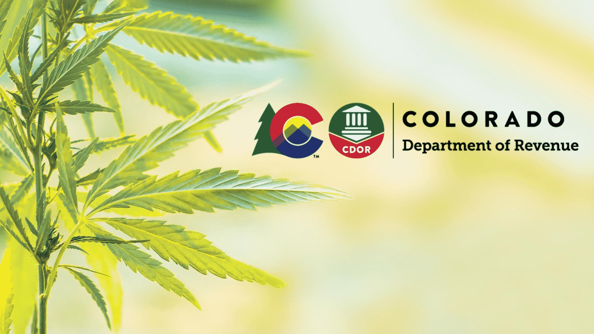 Safety Advisory Issued by Colorado For Possibly Contaminated Marijuana