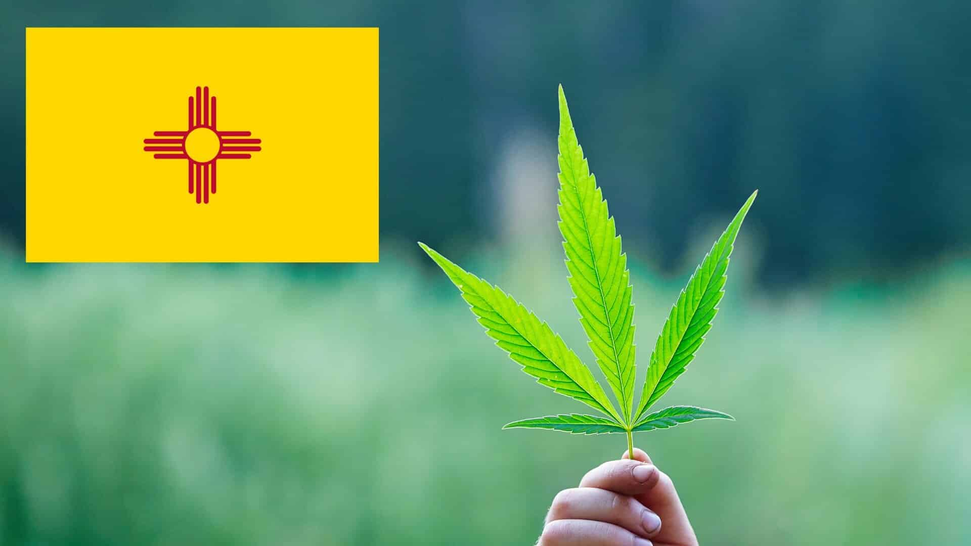 New Mexico Considers Extending Medical Cannabis Program to Bring Relief to Ailing Dogs and People