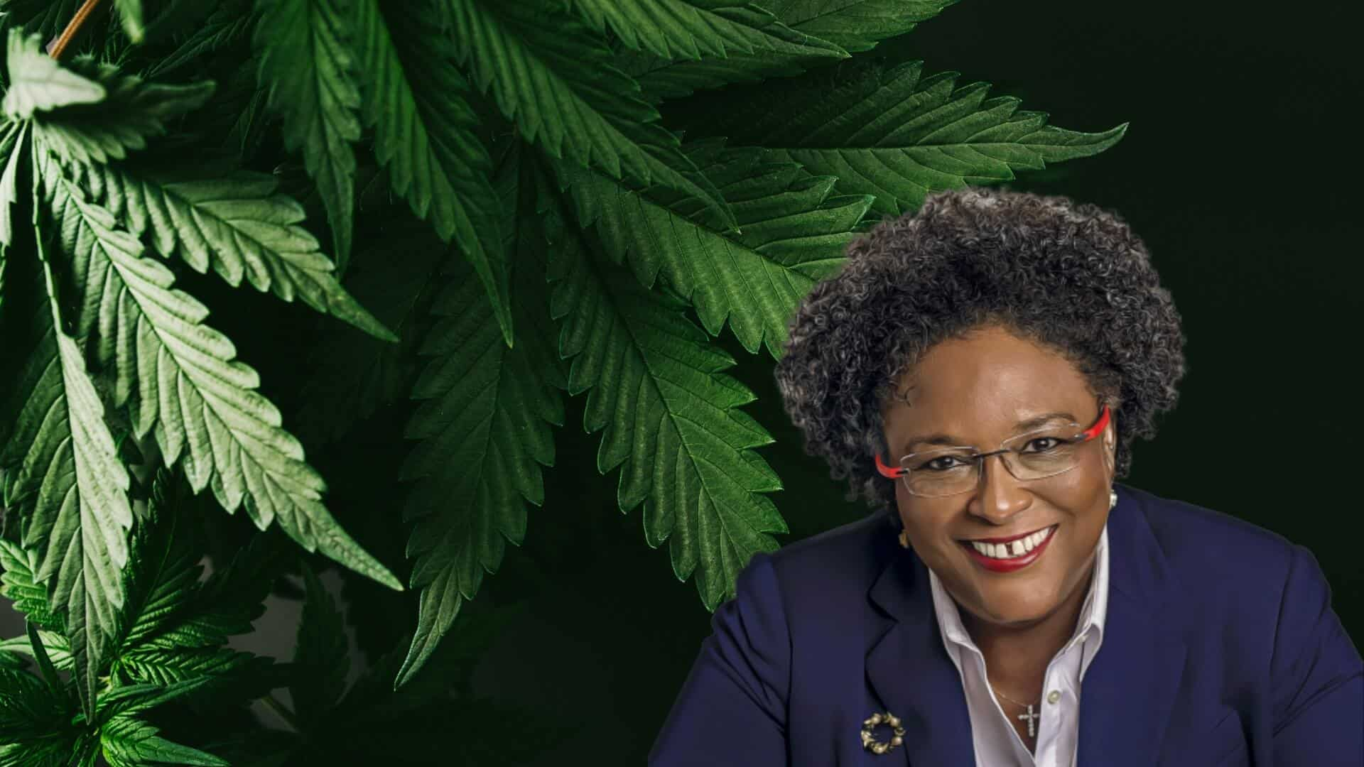 PM Mia Mottley to Seek General Public Consent Before Legalizing Marijuana  for Medical Purpose