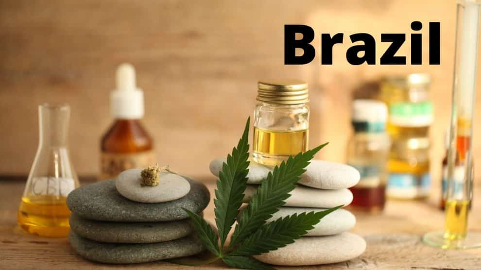 Brazil Approves Marijuana Medicines in Pharmacies