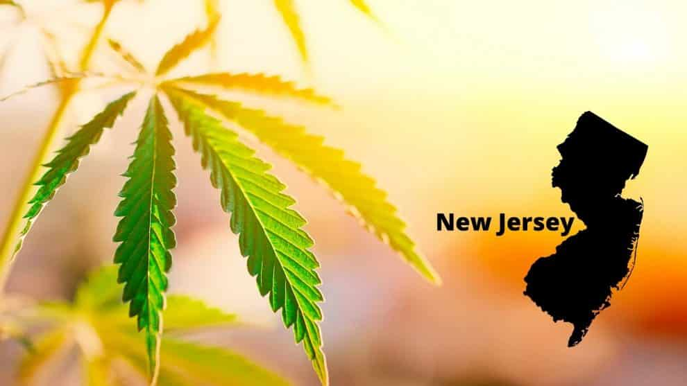 New Jersey Policymakers to Present Marijuana Referendum to Voters in 2020