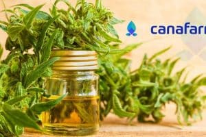 CBD Based Startup Canafarma Decides to Go Live