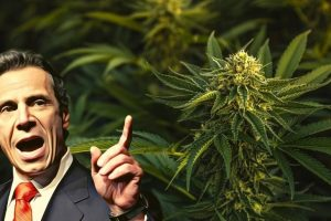 New York's Governor Cuomo Encourages Possibilities of Legalizing Marijuana