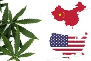 China Ought to Buy More Hemp From the US Under New Trade Deal