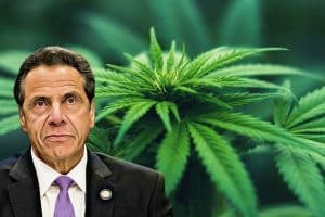 "US Governor Andrew Cuomo Bags ""A"" Rating"