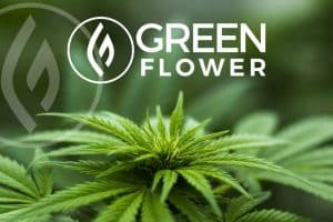 Green Flower Media Introduces CBD Certificate Program