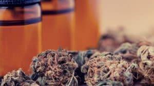 Cannabis Industry Facing Cash Crisis