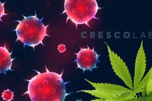 Cresco Labs responce over COVID-19